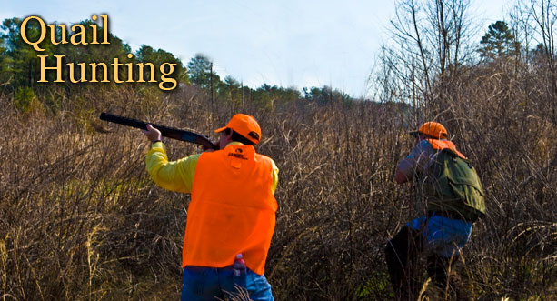 quail hunting nc, king fisher society, corporate event nc, corporate hosting nc
